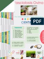 Fasciolosis Hepatica-fisiopatologia (1)