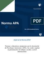 NORMA_APA