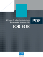 IOR_EOR_published.pdf