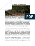 Desventajas de La Forestación