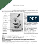 Introducción Al Uso Del Microscopio