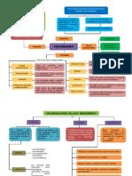 Mapa Conceptual de Organizacion (2)