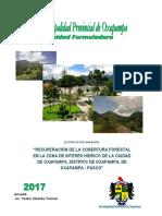 Recuperacion de La Cobertura Forestal en ZIH _Oxapampa - PERFIL
