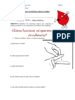 Guía 5ºBásico SIstema Circulatorio