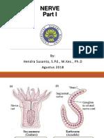 Nervous System_FISHEMAN 2018.pdf