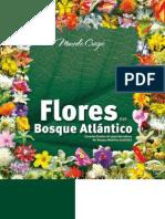 Libro Flores del Bosque Atlántico - 1ª Edición 2010 - Versión para web - Resumén - 16052010