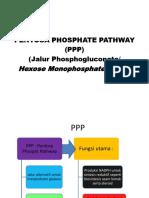 Pentosa Phospate Pathway