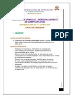 Proctor Estandar 1