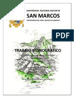 TRABAJO MONOGRAFICO VARIABLE COMP. G2.docx