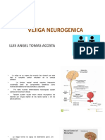 VEJIGA NEUROGENICA
