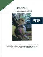 Missing Audrey