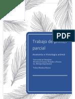 Trabajo Anatomía e Histología Animal. Valeria Mendoza Herrera