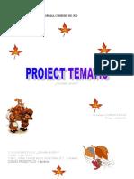 0_6proiecttematictoamna.doc
