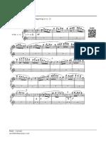 Lexcerpts - Bizet - Carmen - Flute Excerpts