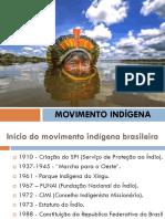 Movimento Indígena (pink)