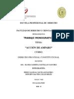 D°ProcesalConst-AccionAmparoDAPS-VIII