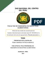 TESIS POMA.pdf