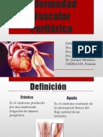 enfermedad vascular perifrica