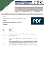 Formato Matriz de Responsabilidades