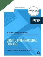 Direito Internacional Público.pdf