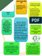 Mapa Mental Decreto 2851
