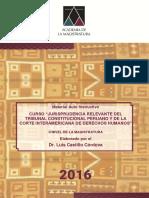 Jurisprudencia relevante del TC peruano y de la Corte IDH, Luis-Castillo-Alva.pdf