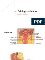 Absceso Criptoglandulares; Sepsis Anorrectal