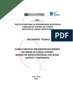 DOCUMENTO-TÉCNICO-IVAA.pdf