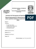 Informe Determinación Del Exceso de Soluto Superficial Mediante La Ecuación de Adsorción de Gibbs