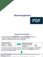 Gluconeogenesis 1