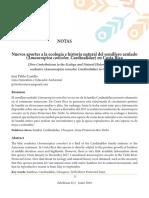 Nuevos aportes a la ecología e historia natural del semillero azulado (Amaurospiza concolor, Cardinalidae) en Costa Rica