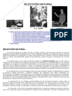 26d-Genética Evolutiva.-Seleccion Natural.pdf