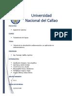 Calculo de la velocidad de sedimentacion.docx