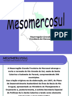 ApresentacaoInstitucionalMesomercosuleForum.pdf