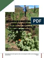 EXPERIENCIA EN EL MANEJO ORGÁNICO DE QUINUA Var. INIA SALCEDO (Chenopodium quinoa Willd.) EN CHIÑAMA, KAÑARIS, 2014.