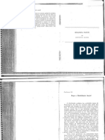 Ianni Raça e mobilidade racial.pdf