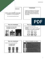 288190134-Completacao-1.pdf