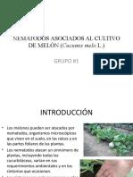 Nematodos Asociados Al Cultivo de Melón Cucumis Melo