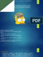 Plan de procesamiento y análisis de-Plan de presentación gráfica de los resultados.pdf