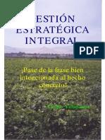 Sílabo de Gestión Estratégica Integral 2018-II