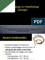 2. Epidemiologi Dan Patofisiologi Cacingan