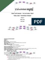 Floricele Vesele 1-Proiect Didactic