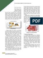 buku dokter yusi-3.docx
