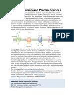 Custom Membrane Protein Services