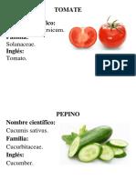 Fichas Alimentos Ingles