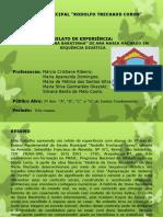 """""""HISTÓRIA-DA-DONA-BARATINHA""""-DE-ANA-MARIA-MACHADO-EM-SEQUÊNCIA-DIDÁTICA.pdf"""