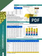 Cardamomo Agro en Cifras 2016