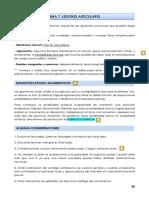 TEMA 7. LESIONES ARTICULARES.pdf