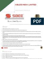 company-profile-eng-443586.pdf