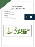 HMT LAB REPORT - HAMZA.docx